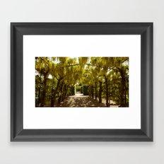 Goldregen Framed Art Print