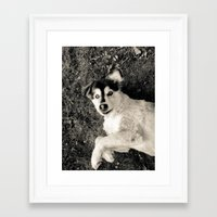 georgia Framed Art Prints featuring Georgia by Sydney S Photography