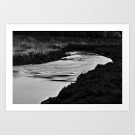 Nala/Olympia: A Case Study - Dream 01 Art Print