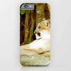 Feline Cat Slim Case iPhone 6s