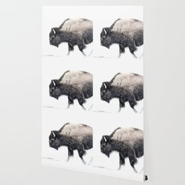 Bison in Yellowstone National Park Wallpaper