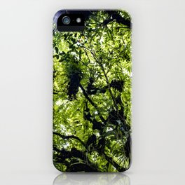 Sunlight Filtering through Ferns and Palm Trees in the Lush Rainforest of Mombacho Volcano, Nicaragu iPhone Case