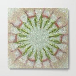 Peeped Disposition Flowers  ID:16165-093506-91430 Metal Print