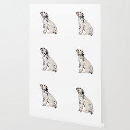 Cute Dalmatian 9 Wallpaper