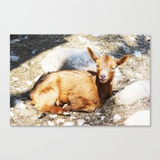 WHEN LIFE IS WONDERFUL Canvas Print