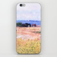 horses iPhone & iPod Skins featuring Horses  by Truly Juel