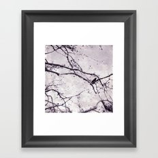 Winter Crow Framed Art Print