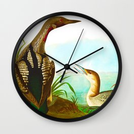 Black Throated Diver Duck Wall Clock