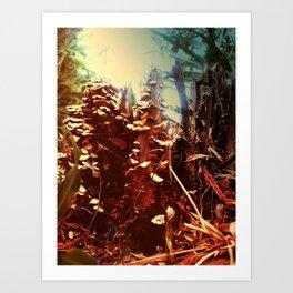 fantastic forest mushrooms Art Print