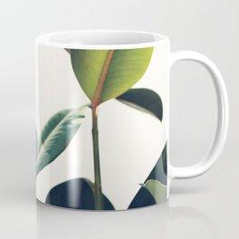 Ficus Elastica #8 Coffee Mug