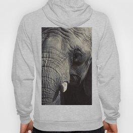 ELEPHANT OH MY! Hoody