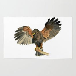 Hawk Flapping Wings Watercolor Painting Rug