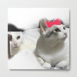 cats-412 Metal Print