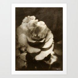 Rosas Moradas 1 Antiqued Art Print