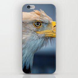 Eagle With An Attitude iPhone Skin