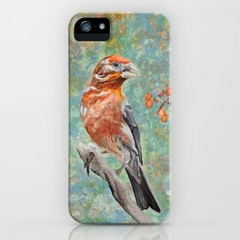 Looking Forward To The Spring iPhone Case