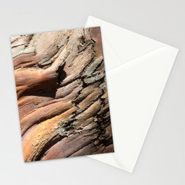 Eucalyptus tree bark texture Stationery Cards