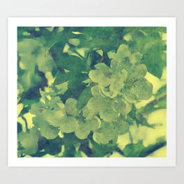 Blossoms in Green Floral Art Art Print