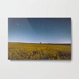 Starry Skies Over Canola Metal Print