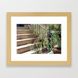35mm Stair to Tree Reflection Framed Art Print