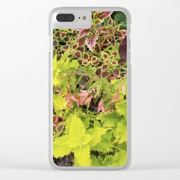 Foliage Fiesta With A Touch Of Begonia Clear iPhone Case