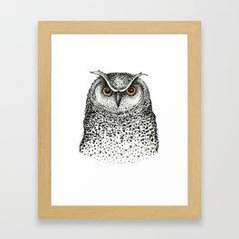 Graphic owl Framed Art Print