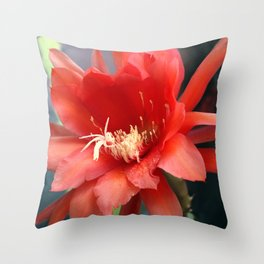 Jungle Cactus Red Throw Pillow