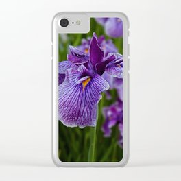 Garden Party (irises) Clear iPhone Case