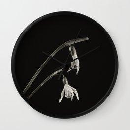 Project 'Decay'. Snowdrop (Galanthus nivalis) Wall Clock