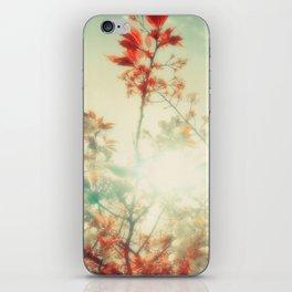 DELIAN iPhone Skin