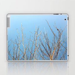 Winter Freeze Laptop & iPad Skin