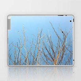Winter Freeze Laptop & iPad Skin