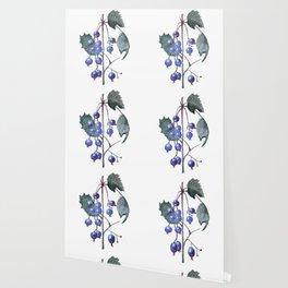 Watercolor Blueberries Wallpaper