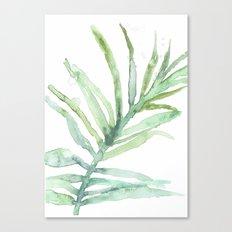 Framed garden 01 Canvas Print