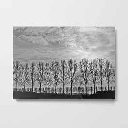 Black and white landscape Metal Print
