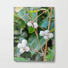 Greenery and Berries Metal Print