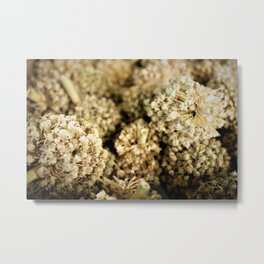 Autumn gifts Metal Print