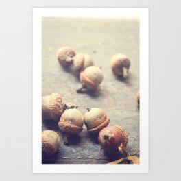 Autumn Acorns Art Print