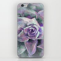 succulents iPhone & iPod Skins featuring Succulents by Klara Acel