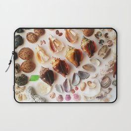 Cockles & Conch Laptop Sleeve