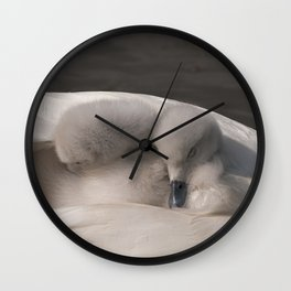 Snuggled Down Wall Clock