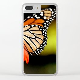 Butterfly beauty Clear iPhone Case