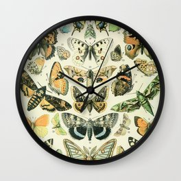 Vintage Butterfly Diagram // Papillions by Adolphe Millot XL 19th Century Science Textbook Artwork Wall Clock