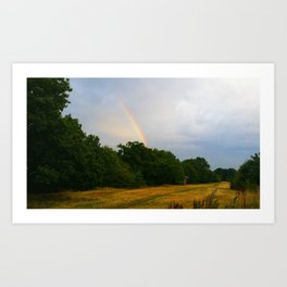 rainbow walking Art Print