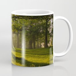 Forest Landscape at Sunset - Nature Photography Coffee Mug