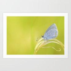 Small Blue Art Print