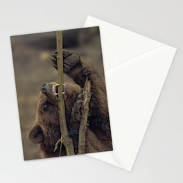 Grizzly Attacking A Tree Stationery Cards