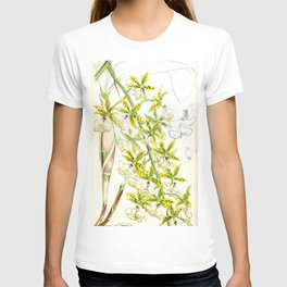 A orchid plant - Vintage illustration T-shirt