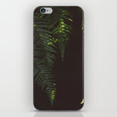 Ferns of Emerald iPhone & iPod Skin