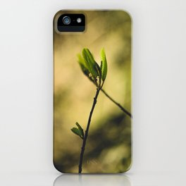Spring at Nesmith Point iPhone Case